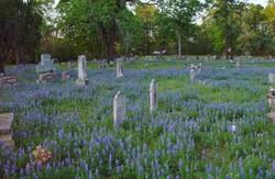 Peebles Cemetery