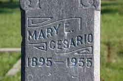 Mary E. Cesario