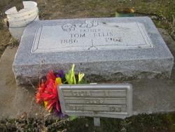 Celia E. <i>Luce</i> Ellis