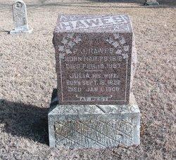 Julia <i>Bowles</i> Hawes