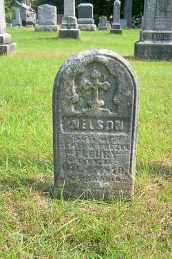 Nelson Fleury