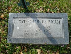 Lloyd Charles Brush