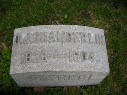 David J Chamberlin