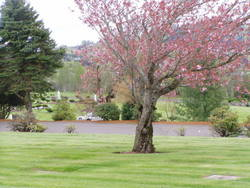 Skyline Memorial Gardens