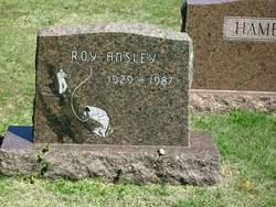 Roy Ansley