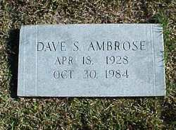 Dave S Ambrose