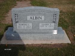 Howard L Albin