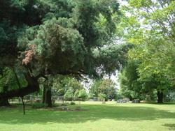 Buie Cemetery
