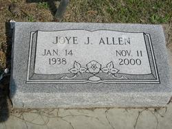 Joye Jean <i>Dewberry</i> Allen