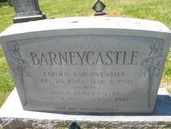 Cephus Barneycastle
