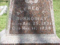 Alfred E. Burnquist