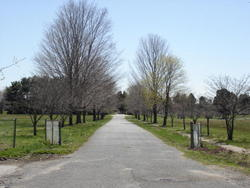 Overlook Cemetery