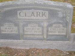 Andrew Thomas Clark