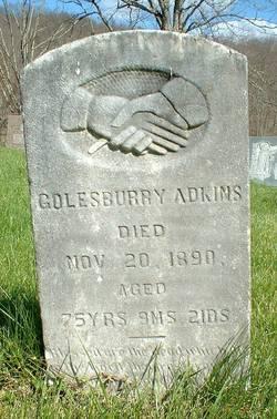 Goldsberry Adkins
