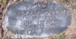 Angelo Cardini