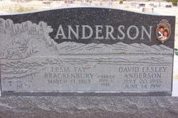 David Lesley Anderson