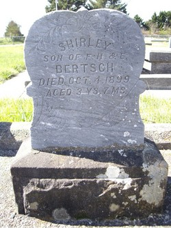 Shirley Bertsch