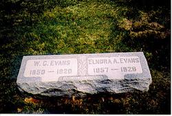 Dorcas Elnora Ann <i>Ard</i> Evans