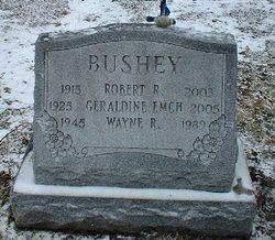 Robert R Bushey