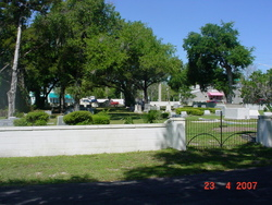 Temple Beth Shalom Cemetery