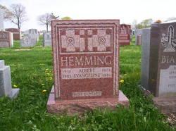 Dr Albert Hemming