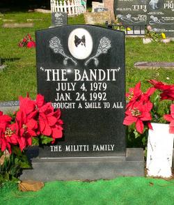 The Bandit Militti