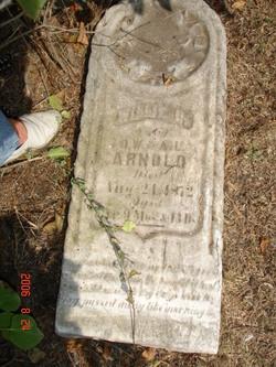 William D Arnold