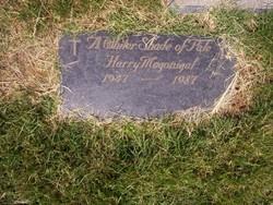 Harry Magonigal