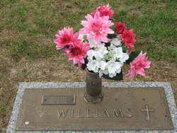 Alva Lee Al Williams