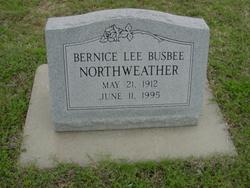 Bernice Lee Bennett <i>Northweather</i> Busbee