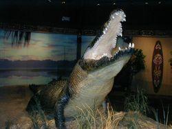 Gomek the Alligator