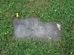 David Lee Abernathy