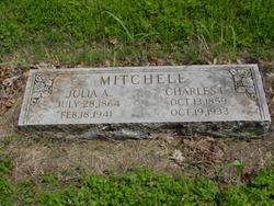 Julia A Mitchell