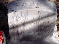 Laura Whipple