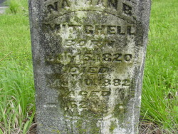 Nathan B Mitchell