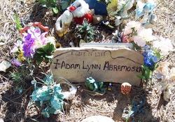 Adam Lynn Abramoska