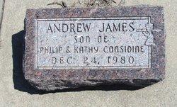 Andrew James Considine