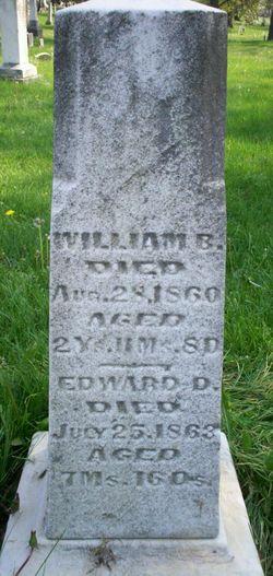 Edward D Robertson