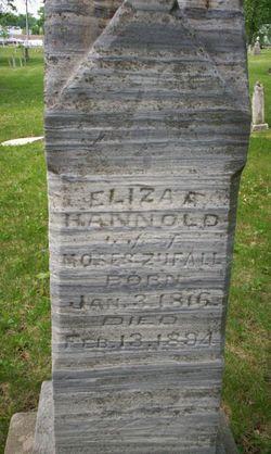 Eliza Ann <i>Hannold</i> Zufall