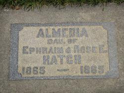 Almedia Hatch