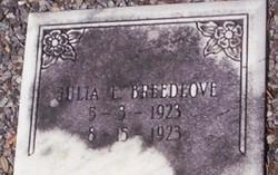 Julia E. Breedlove