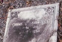 Willie A. Breedlove