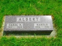Carol Rae <i>Akin</i> Albert