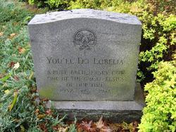 You'll Do Lobelia