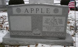 Morris Apple
