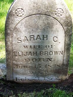 Sarah C Brown