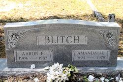Amanda M Blitch
