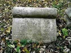 Samuel McClelland Eakins