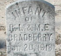 Infant Bradberry