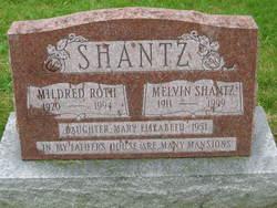 Melvin Floyd Shantz